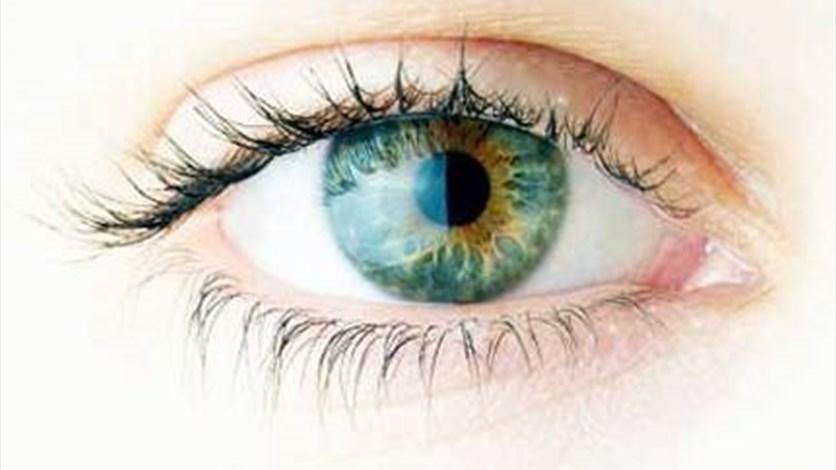 GATYXEL العين