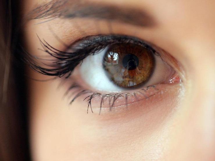 GATYXEL لعلاج العين