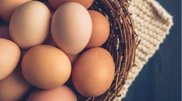يحتوي البيض على العديد من العناصر المفيدة في حالة تناوله باعتدال