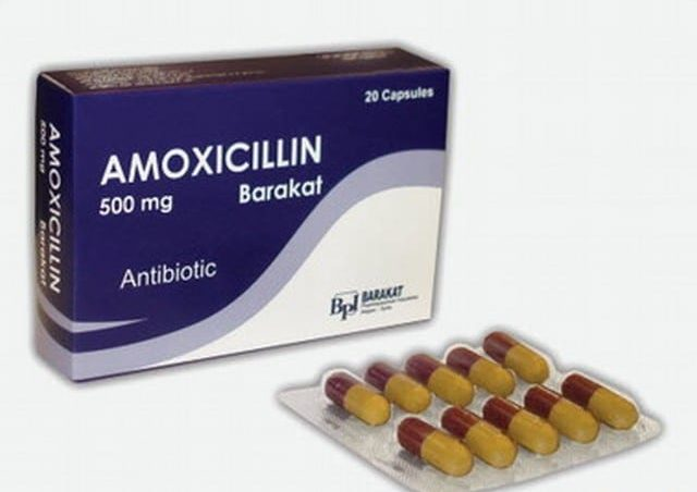 Amoxicillin 500 دواعي الاستعمال والجرعات وطريقة وموانع الاستخدام للأطفال والكبار