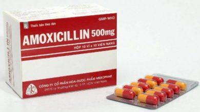 amoxicillin 500 دواعي الاستعمال