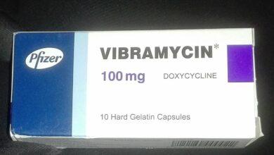 فيبراميسين