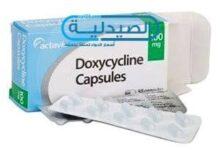 دوكسيسيلين للتخلص من البكتيريا