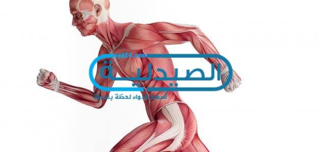 طرق علاج الشد العضلي والتشنجات