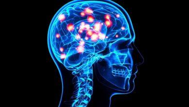 معلومات عن كهرباء المخ