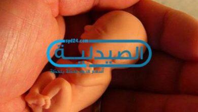الشهر الثالث من الحمل