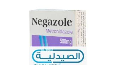 المضاد الحيوي نيجازول
