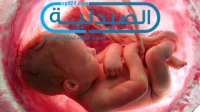 حركة الجنين في الشهر الثالث