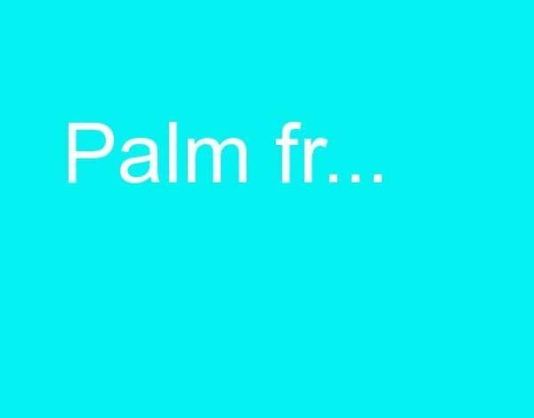 PALM FRESH 60 GM MASSAGE CREAM مضاد لألم المفاصل